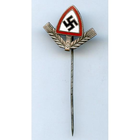 RAD membership pin