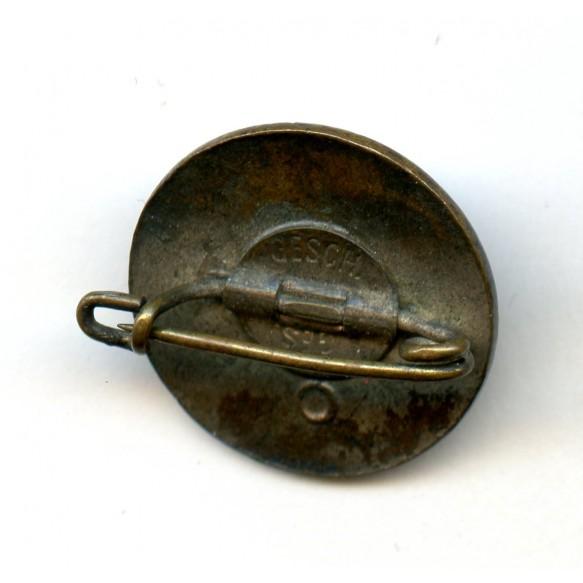 """Party pin """"Deutschland Erwache"""", small variant"""
