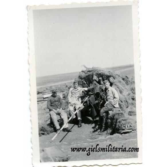 Private snapshot artillerie gun position