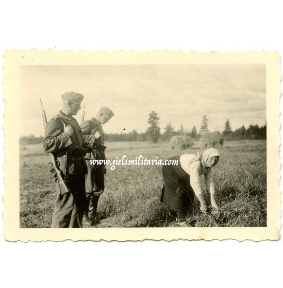 Private photo German soldiers staring at Russian female farmer, Russia 1941