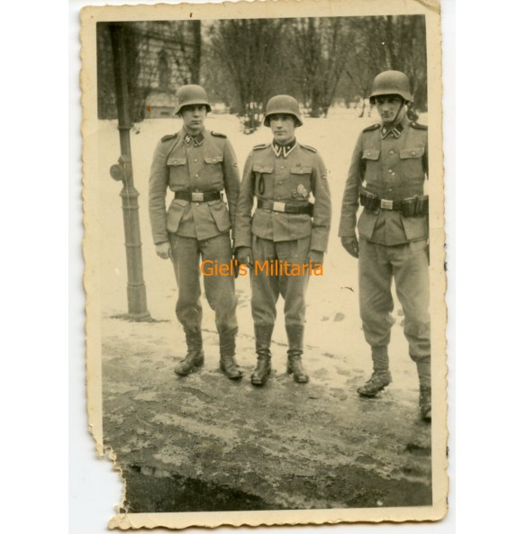 """Private photo decorated SS-Unterscharführer """"Wiking"""""""